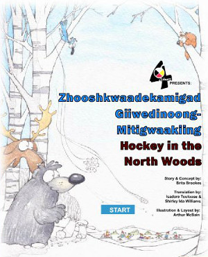 Book cover for Hockey in the Northwoods.